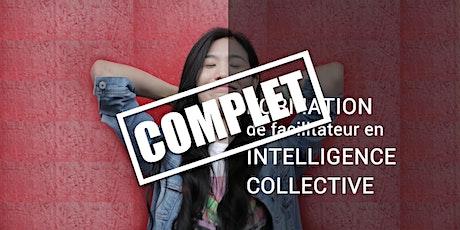 Formation de facilitateur en Intelligence Collective