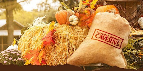 Happy Fall Y'all - Special Activities Every Weekend in October! tickets