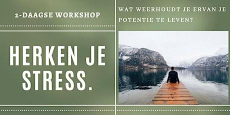 Herken je stress   2-daagse workshop Duurzaam Gezonder tickets