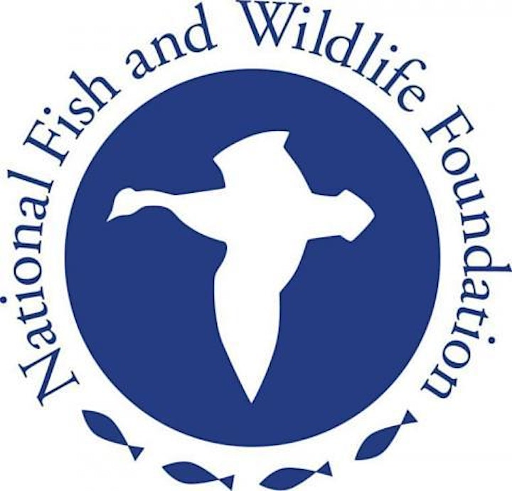 Marine Meadows Workshop, Sponsored by National Fish and Wildlife Foundation image