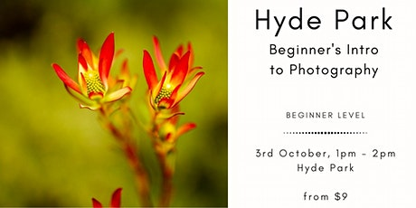 Photography Beginner's Session & Photo Walk at Hyde Park tickets