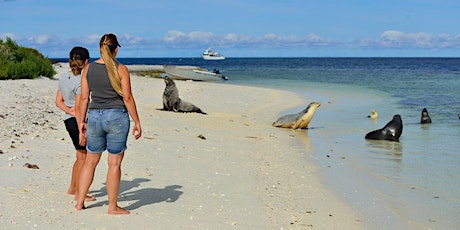 Abrolhos Islands Day Trip on Fortitude tickets