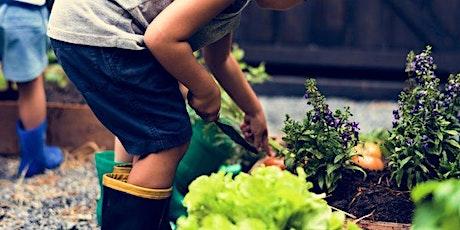 Taller  Amar la Tierra. Breve introducción a la Pedagogía Verde- Adultos. entradas