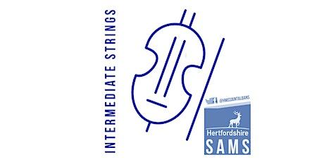 ONLINE: St Albans Music School: Intermediate Strings Taster tickets
