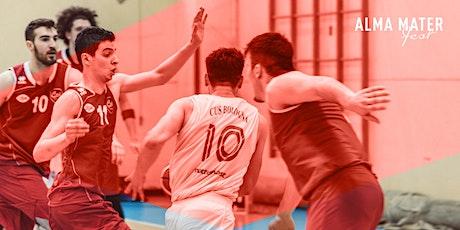 Basket @Alma Mater Fest - Palacus Bologna biglietti