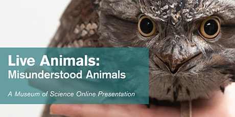Live Animals:  Misunderstood Animals - #Livestream tickets