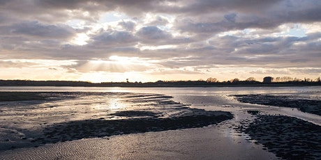 Old Way - 1-day Section from Nutbourne to Chichester Cathedral tickets