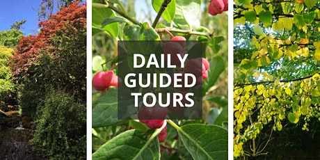 October Daily Guided Tours tickets