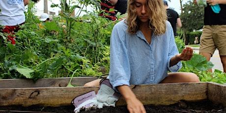Gardening 101 with Fleet Farming (Webinar) tickets