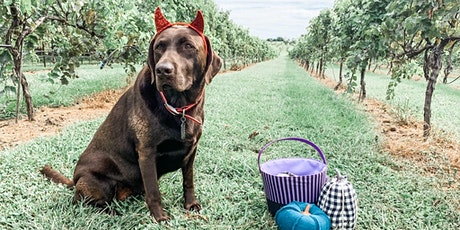 Howl-O-Ween Party at KC Wine Co. tickets