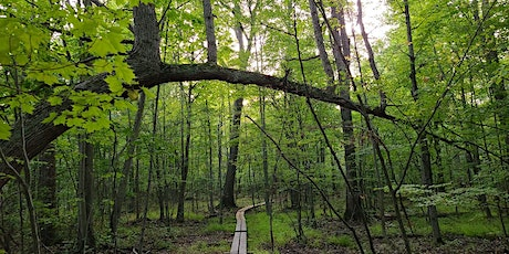 Gallogly Nature Hike tickets
