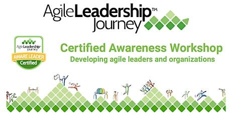 Online Agile Leadership Awareness Workshop January 4-29, 2021 tickets