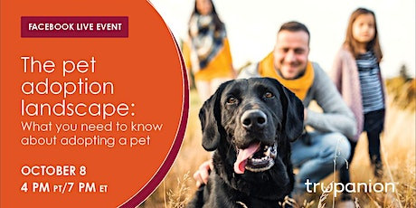 The pet adoption landscape: What you need to know about adopting a pet tickets