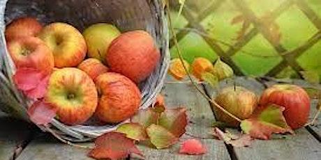 Harvest Thanksgiving Evensong tickets