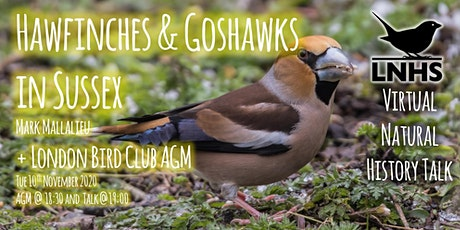 Hawfinches and Goshawks by Mark Mallalieu and LBC AGM