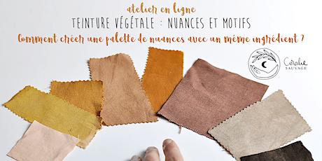 Teinture Végétale : Nuances et motifs (aller plus loin) billets