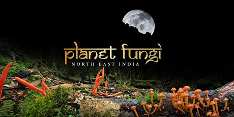 Myco Hangout with the Creators of Planet Fungi tickets