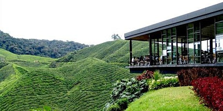 Cameron Highland, Mossy Forest & Kellie's Castle (2D1N) - Road Trip tickets