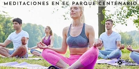 Meditaciones Activas en el Parque Centenario entradas