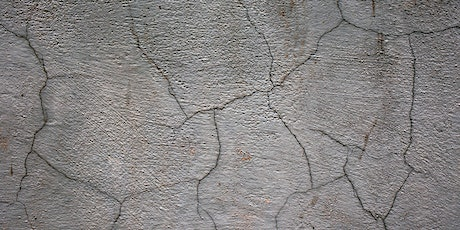 DEEP DIVE - Concrete Cracking, Sealing and Healing tickets