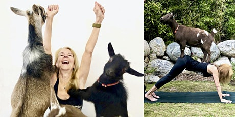Goat Yoga Nature Walk tickets
