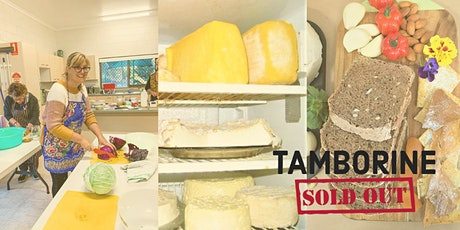 New Cheese, Sourdough & Fermented Foods Workshops - Tamborine tickets