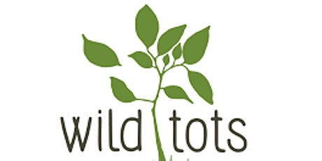Wild Tots - Abergavenny tickets