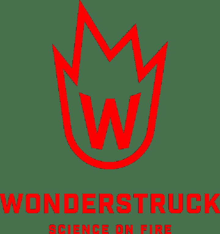 SSF20 Fair Day - Wonderstruck – From Afar! image