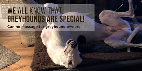 Canine massage for greyhound owners tickets