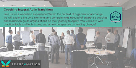 Coaching Integral Agile Transitions - REMOTE tickets
