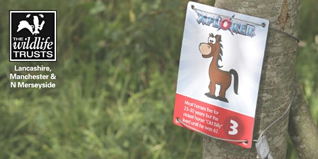 Brockholes Xplorer Challenge tickets