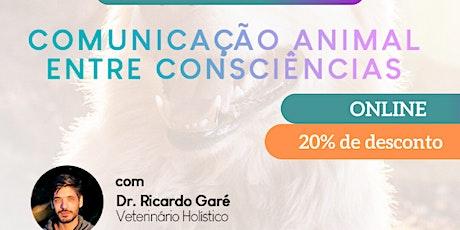 Curso Online Comunicação Animal entre Consciências - 31/10 e 01/11 ingressos