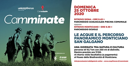 Camminate - Le acque e il percorso panoramico di Monticiano e San Galgano tickets