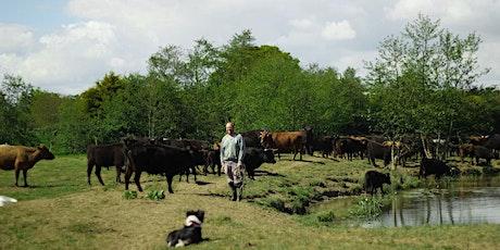 Farm walk with farmer.