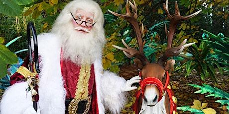 Santa's Grotto - Edinburgh Zoo's Christmas Nights, 28th Nov tickets