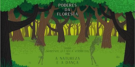 Vivência Poderes da Floresta ingressos