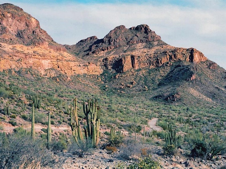 Organ Pipe Cactus National Monument Riding Tour/Veterans Back 40 Adventure image