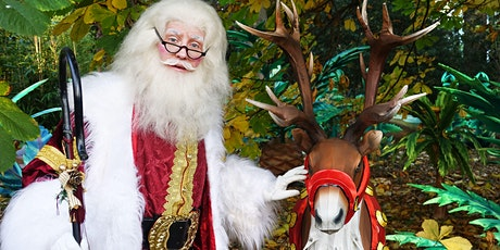 SOLD OUT - Santa's Grotto - Edinburgh Zoo's Christmas Nights, 4th Dec tickets