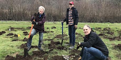 Burnt Bridge Creek Volunteer Planting- Dig it, Plant it, Do it Again! tickets