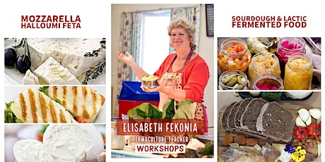 New Cheese, Sourdough & Fermented Foods Workshops - Townsville tickets