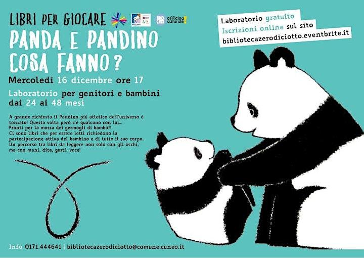 Immagine Libri per giocare > Panda e Pandino cosa fanno? (24-48 mesi)