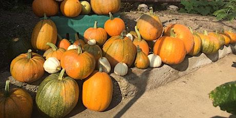 Garden Cottage Pumpkin Patch tickets