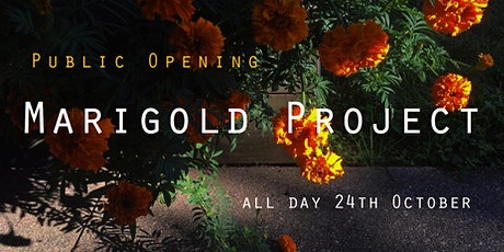 Marigold Project Public Opening tickets