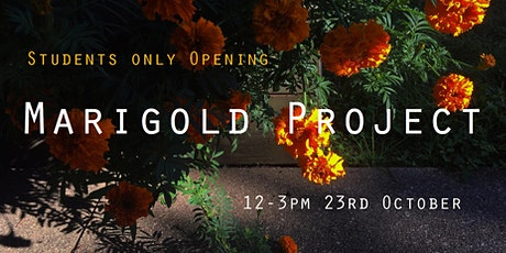 Marigold Project Student Opening tickets