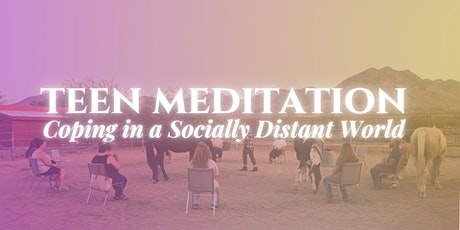 Teen Meditation with Horses tickets