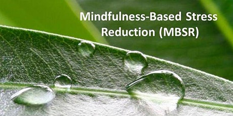 Mindfulness-Based Stress Reduction Course  starts Nov 25(8 onsite sessions) tickets