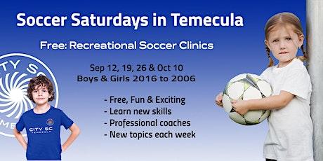 Recreational Soccer Clinics tickets