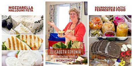 New Cheese, Sourdough & Fermented Foods Workshops - Whitsunday