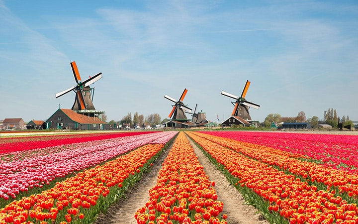 Afbeelding van Starting a business in Netherlands as a foreigner immigration_to_netherland