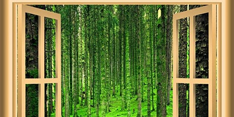 Nature Window Scavenger Hunt tickets